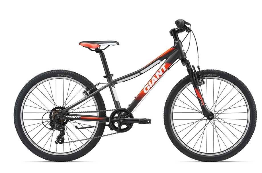 Slika GIANT 2018 XTC JR 2 24